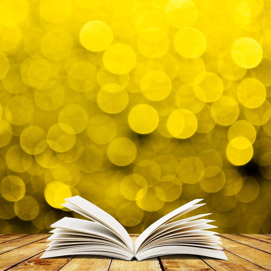 bokeh-book-paper-247644